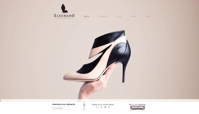 Product Shot For Elegnano Shoes